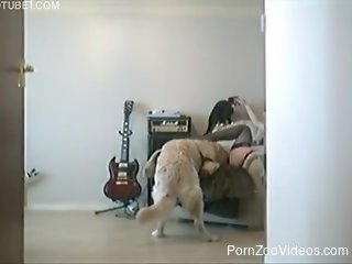 Home video with naked wife enduring the dog for a few sex rounds